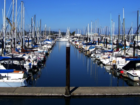 Sailing boats and yachts in marina