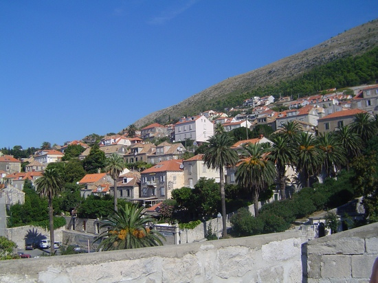 Hillside houses at Dubrovnik