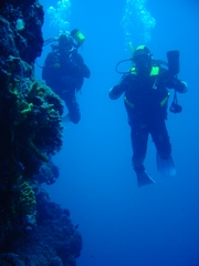 Scuba diving in Adriatic sea